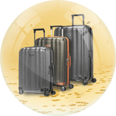 christmas-luggage-sets-2018